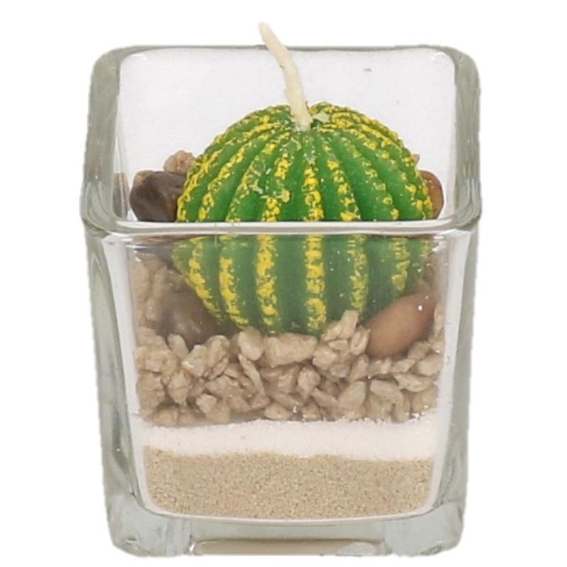 Bolcactus kaarsje in glas 5 cm