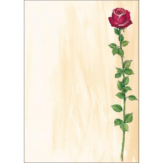 Cadeautekst papier roos