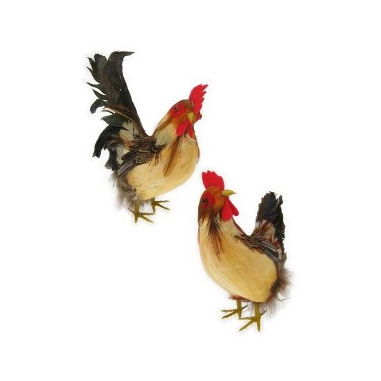 Haan en kip decoratie stuk