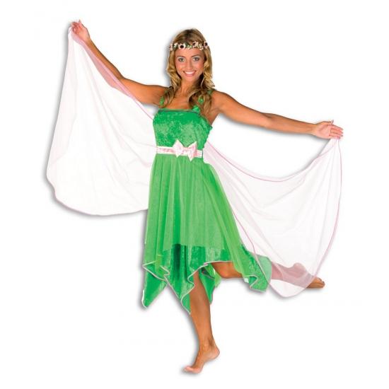 Elfen jurk in de kleur groen