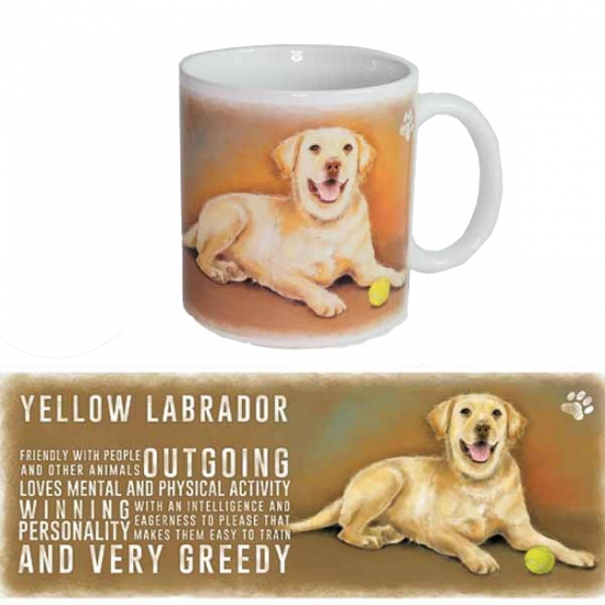 Grote theemok Labrador Retriever