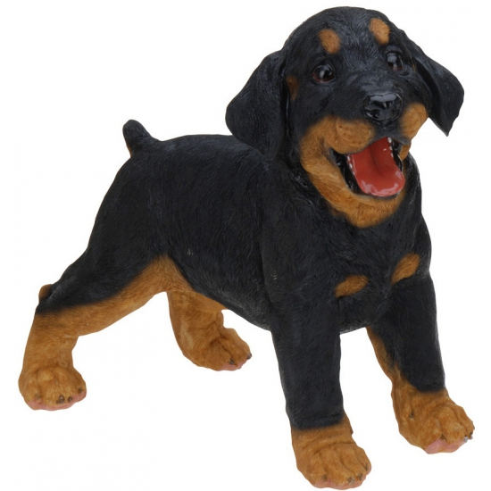 Honden beeldjes staande Rottweiler 29 cm