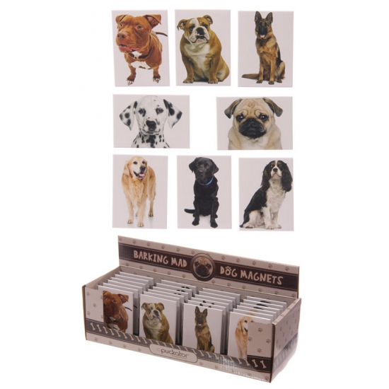Honden magneet Bulldog