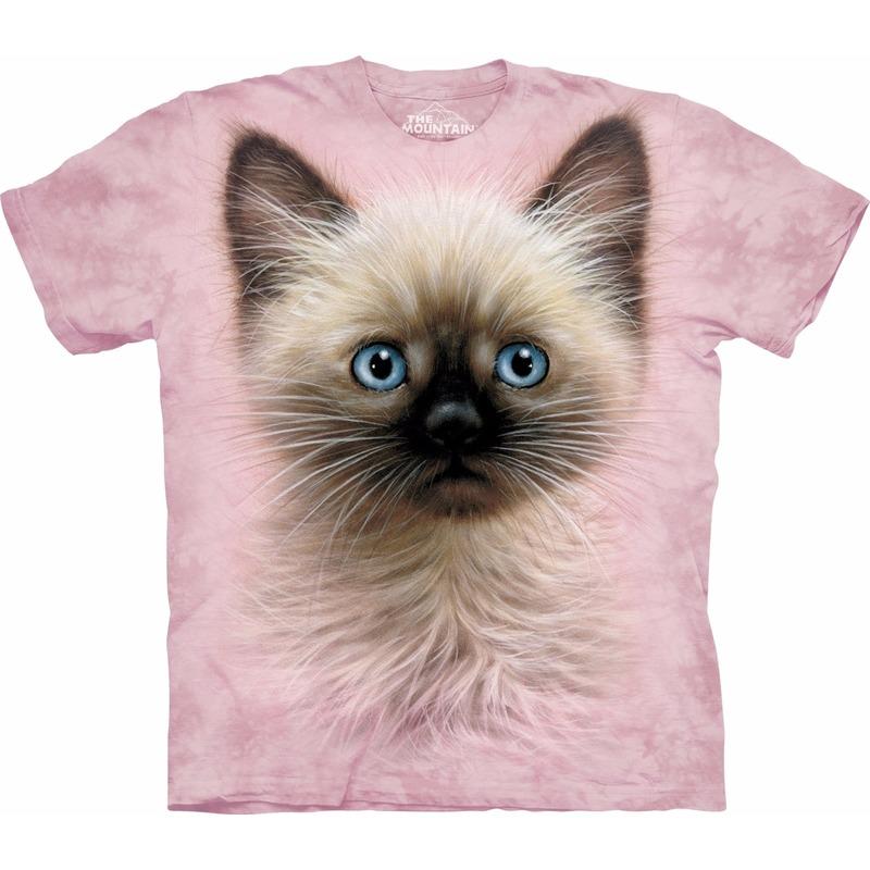 Kinder T shirt kat/poes/kitten met blauwe  ogen