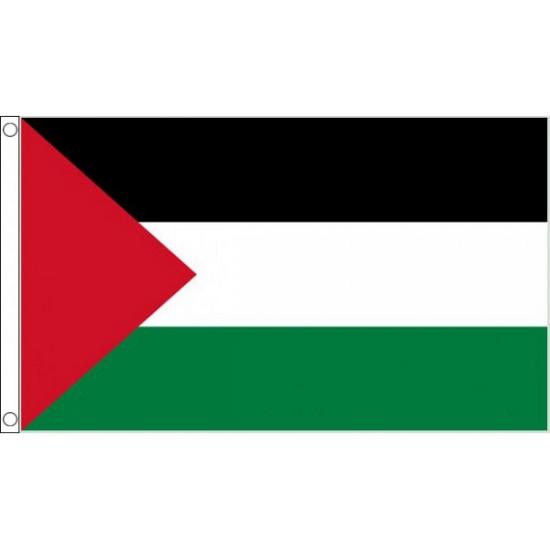 Palestina vlag 90 x 60 cm