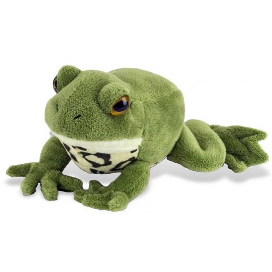Pluche groene knuffel kikker 18 cm