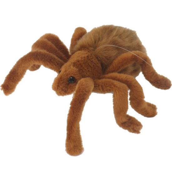 Pluche knuffel spin 19 cm