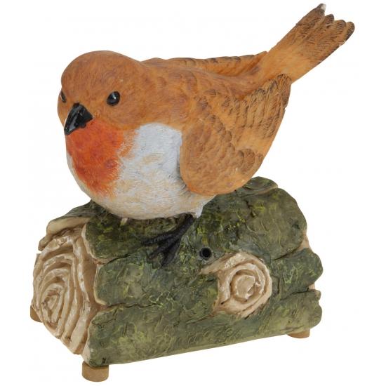 Roodborstje vogel met geluid