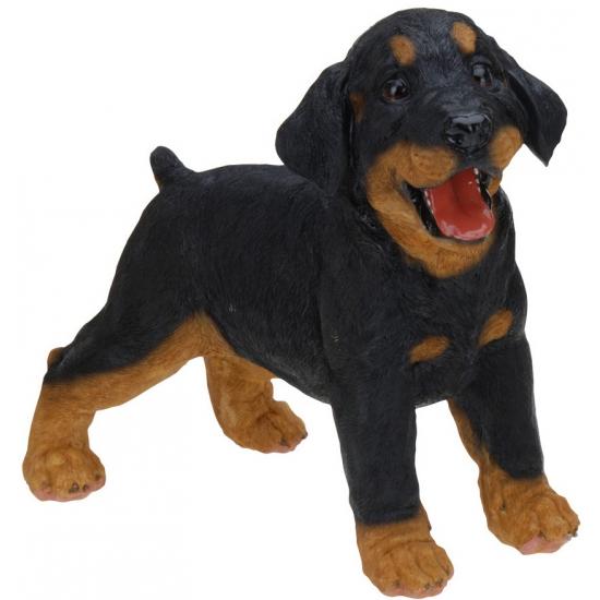 Staande Rottweiler puppy van polystone 29 cm
