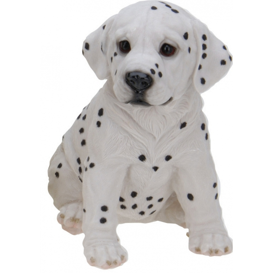 Stenen Dalmatier puppy zittend 23 cm