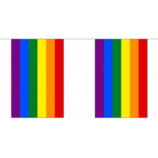 Vierkante regenboog vlaggenlijn 9 m