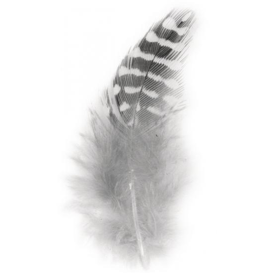 Zwart en witte decoratie veren