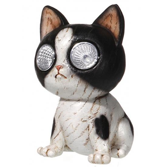 Zwart/wit katjes beeld met solar licht