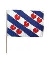 10x extra grote zwaaivlaggen friesland