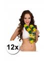 12 hawaii kransen brazilie