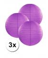3 donker paarse lampionnen 25 cm
