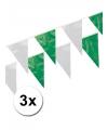 3x plastic vlaggenlijn groen wit
