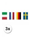 3x vlaggenlijn europa 10 meter