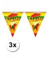 3x vlaggenlijn fiesta 5 meter