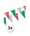 3x vlaggenlijn groen rood wit 4 meter