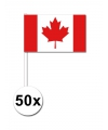 50 canadese zwaaivlaggetjes 12 x 24 cm