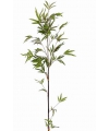Bamboe tak met zwarte steel 140 cm