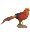Beeld goudfazant vogel 26 cm
