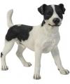 Beeld jack russel terrier zwart wit 35 cm