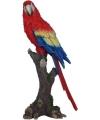 Beeld papegaai vogel 38 cm