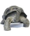 Beeld schildpad 26 cm