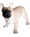 Beeld staande franse bulldog hond 35 cm