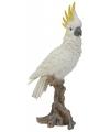 Beeld witte kaketoe 40 cm
