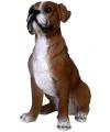 Beeldje boxer hond 25 cm