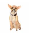 Beeldje chihuahua hond met riem 18 cm
