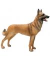 Beeldje mechelse herdershond 20 cm