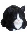Beeldje slapende zwarte kat 34 cm
