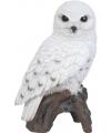 Beeldje sneeuwuil vogel 27 cm