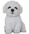 Beeldje zittende bichon frise pup 15 cm