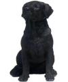 Beeldje zittende zwarte labrador hond 21 cm