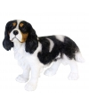 Beeldje zwarte king charles hond 31 cm