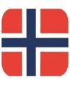 Bierviltjes noorse vlag vierkant 15 st