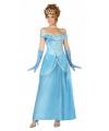 Blauwe prinsessen kleding
