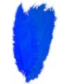 Blauwe spadonis sierveer 50 cm