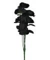 Boeket met 12 zwarte rozen