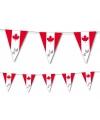 Canada vlaggenlijn 3 5 meter