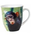Chimpansee mok