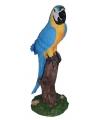 Decoratie blauwe papegaai 32 cm