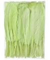 Decoratie veren groen 13 cm