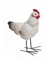 Decoratief kippen beeldje 15x19 cm