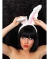 Diadeem met witte konijnen oren